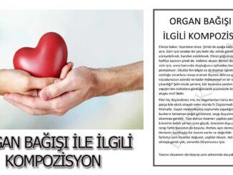 doku ve organ nakli haftası ile ilgili-kompozisyon