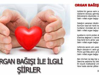 organ-nakli-ile-ilgili-şiir